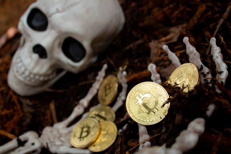Une étude démontre que les possesseurs de Bitcoins ne sont pas effrayés par les baisses de prix