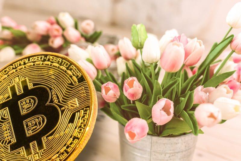 Les 1.1 million de Bitcoin (BTC) de Craig Wrightsont-ils stockés sur une 3ème fiducie ? (spoiler : non)