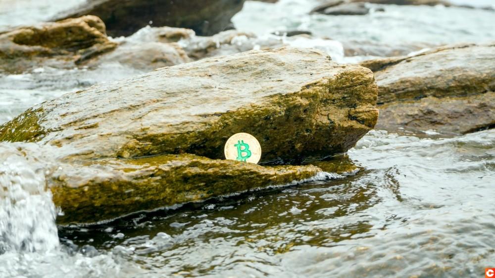 perte bitcoins chance
