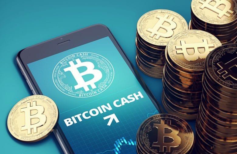 Bitcoin Cash s'est rapidement fait une place après sa création