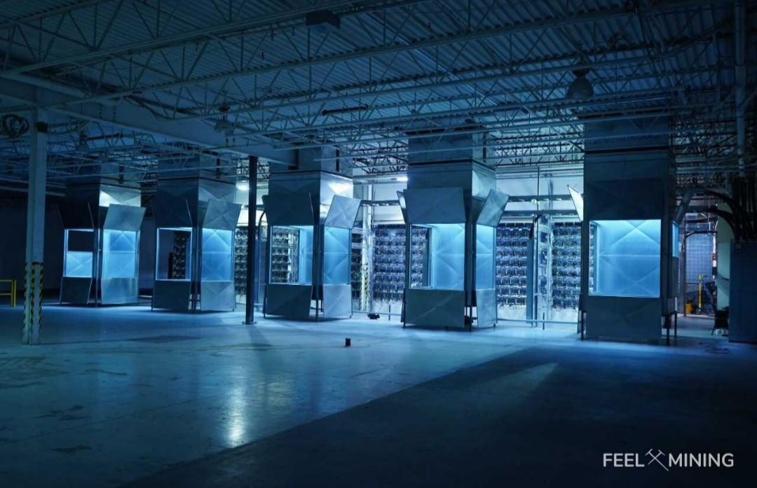 La ferme de minage canadienne de Feel Mining