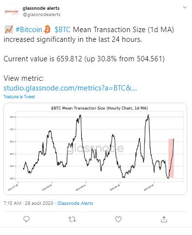 Bitcoin Glassnode nombre taille transactions BTC