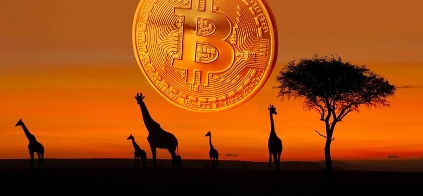 Pourquoi l'avenir du bitcoin va se jouer en Afrique (Partie 1) - Cointribune