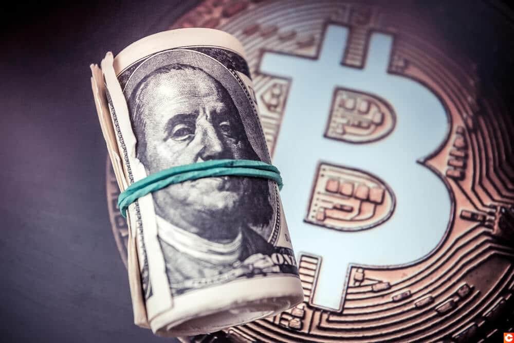 bitcoin danger dollar