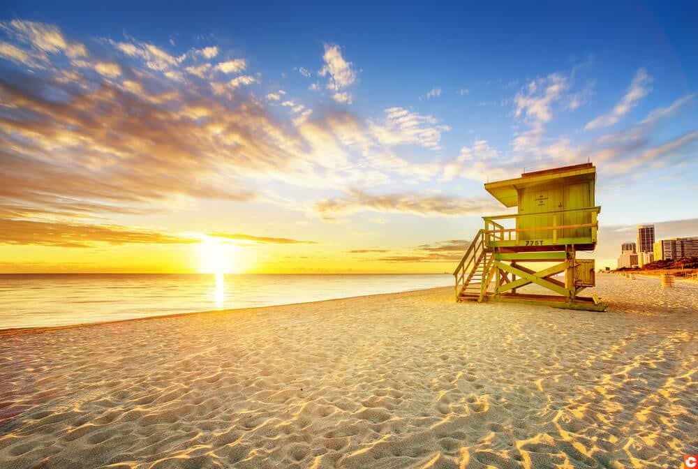 Miami songe officiellement à mettre des fonds du gouvernement dans le Bitcoin (BTC) - Cointribune