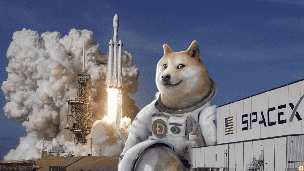 Doge - Space X