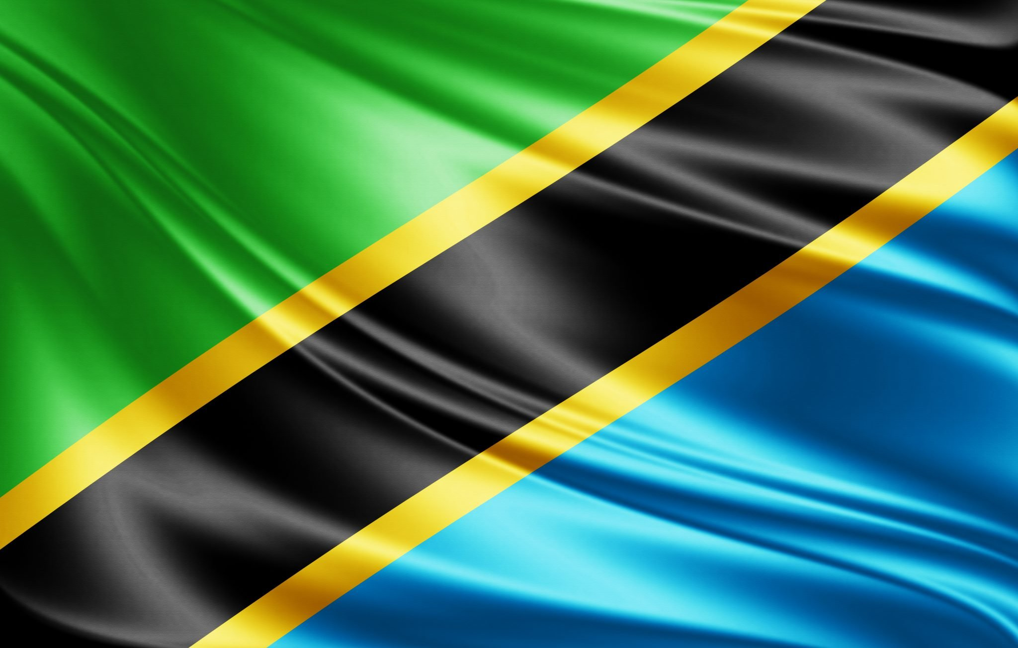 Flag of Tanzania with copy space for your text  - 3D illustration