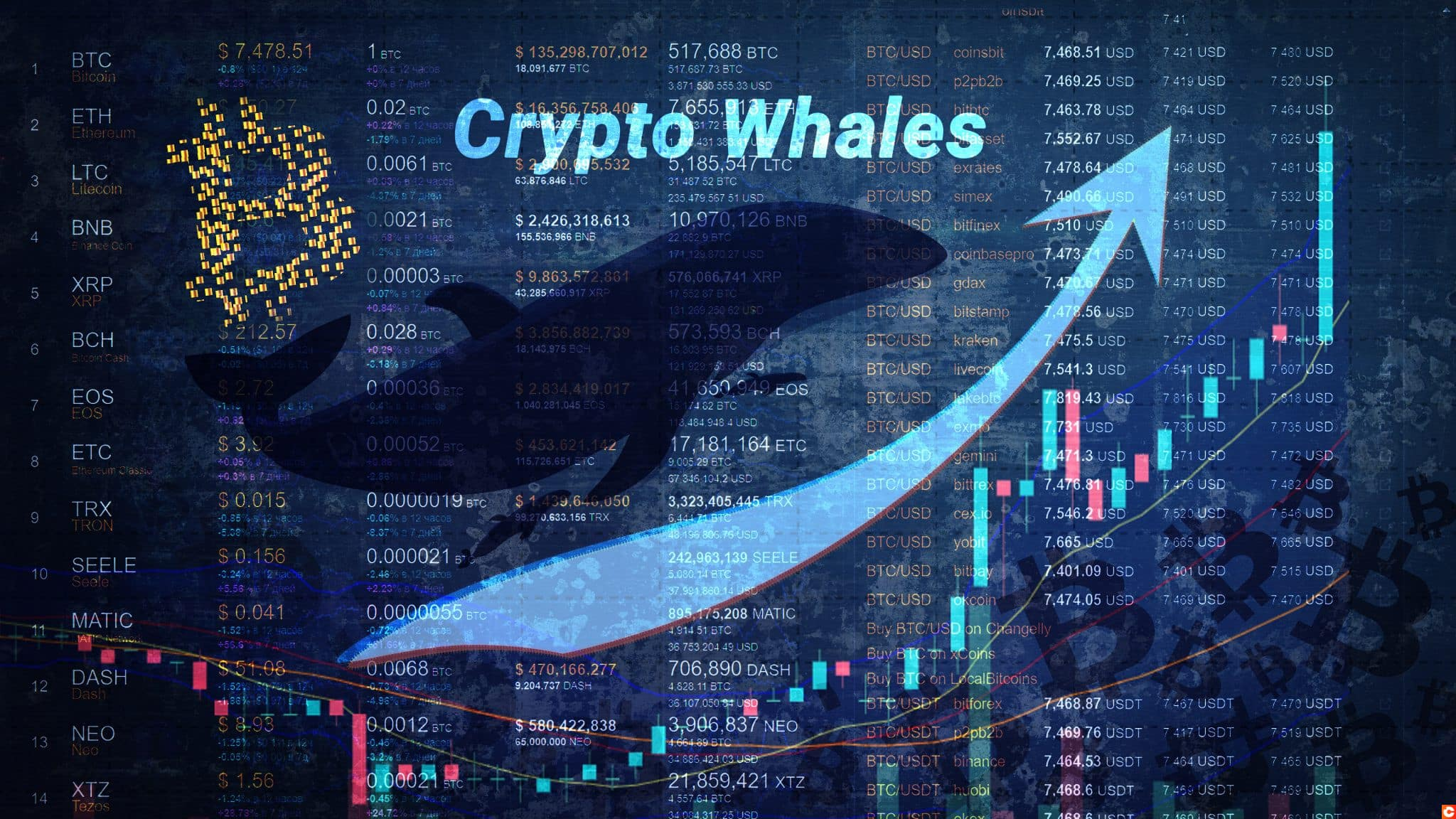 Growth in the number of crypto whales with an upward arrow and a chart rushing upward. Increase in large clusters of BTC. Coin names and numbers on a dark background. Bitcoin logo. Horizontal.