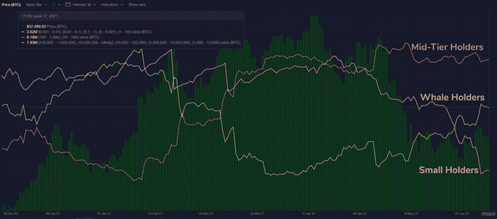 La courbe jaune représente le nombre de BTC détenus par les adresses ayant plus de 10 000 BTC La courbe rouge représente le nombre de BTC détenus par les adresses ayant entre 10 et 1000 BTC La courbe violette représente le nombre de BTC détenus par les adresses ayant entre 0,001 et 10 BTC  Les barres vertes représentent le prix du BTC Source : SANTIMENT
