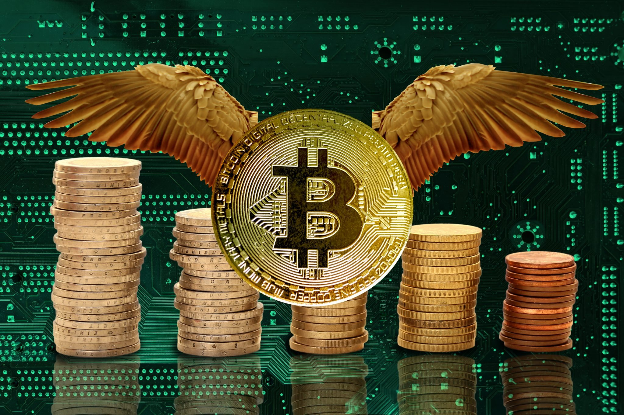 Bitcoin e-cryptocurrency with wings flies, green electronic printed circuit board, PCB with microelectronic components for technology and computer systems, modern technology concept, global business