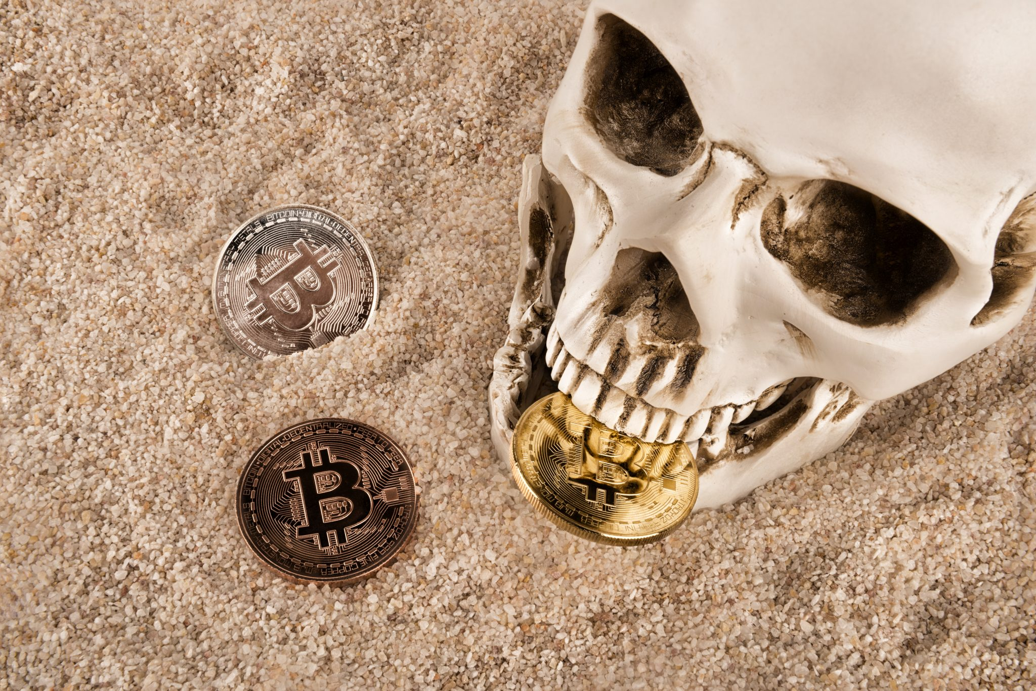 Close up on skull biting bitcoin over sand background. Concept of investment and fluctuation of bitcoin and cryptocurrency.