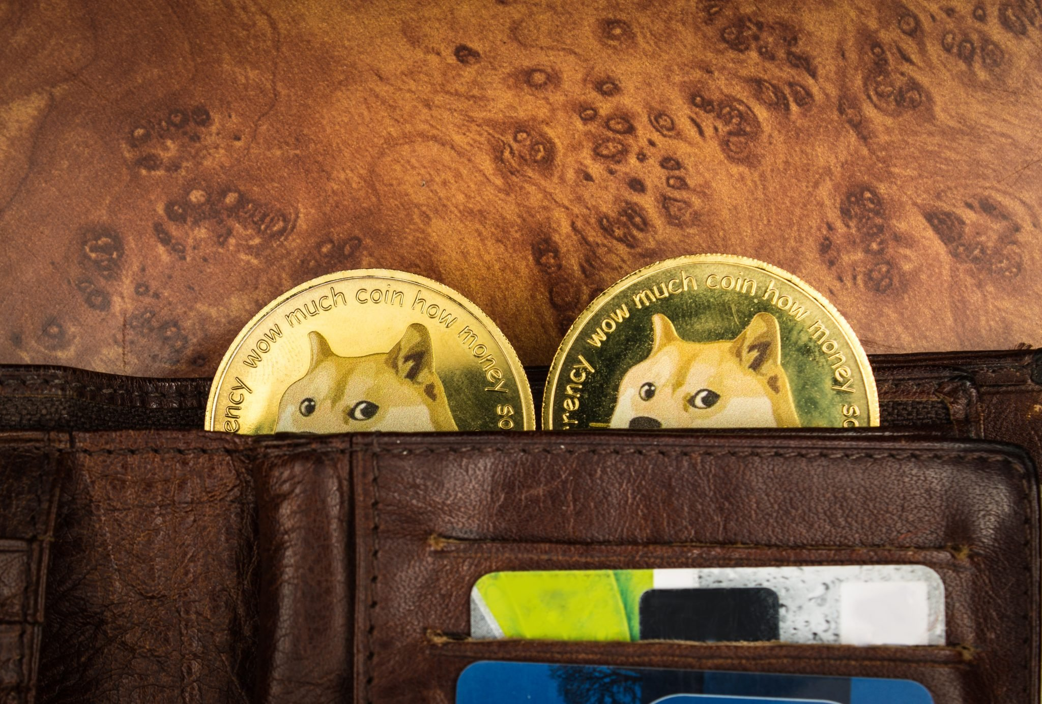 Dogecoins in a wallet on a table
