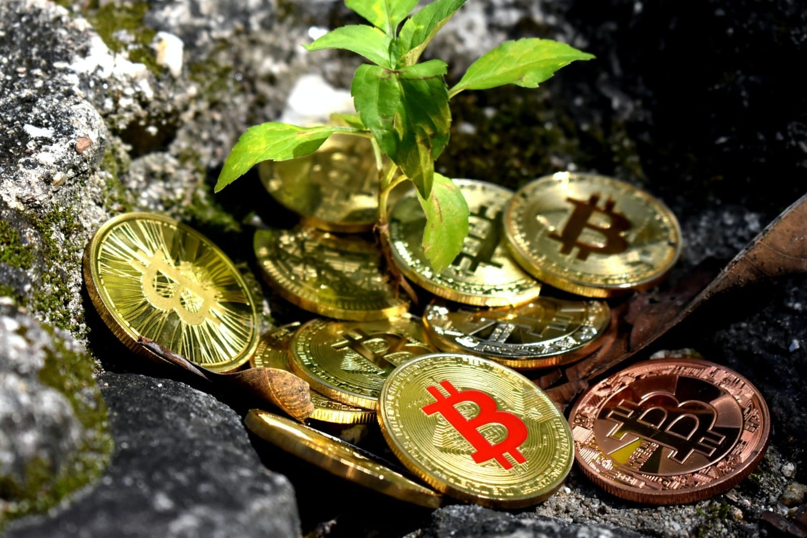 come è il valore di bitcoin determinato